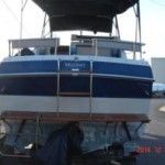 Wellcraft 260 Aft Cabin 11