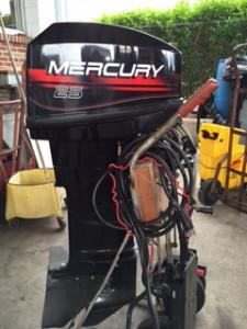 Mercury Electric Long Shaft